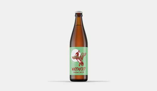 Piwo why duck american pale ale